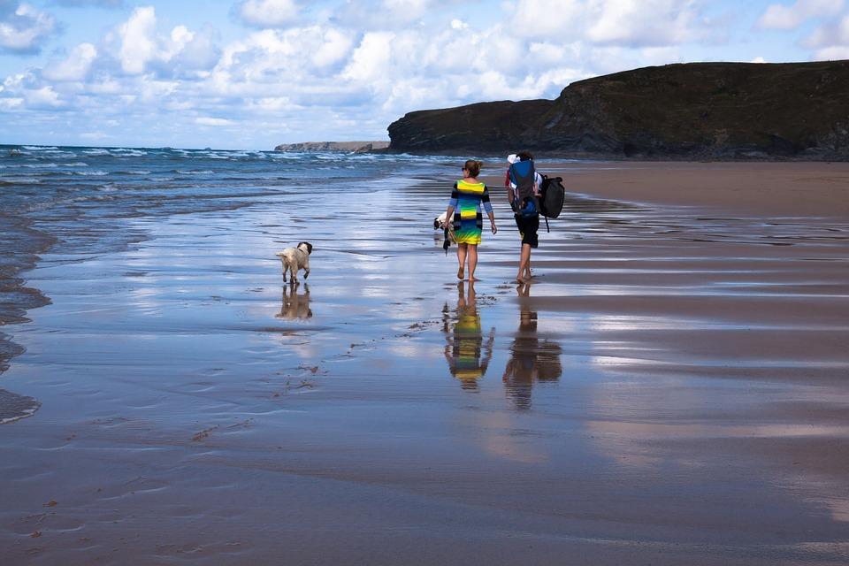 chien famille et plage