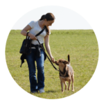 Virginia KLEIN, comportementaliste et éducatrice canin