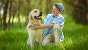 Prévention morsures chien